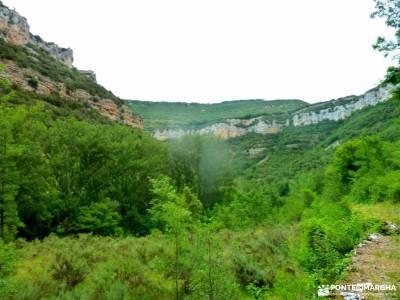 Sedano,Loras-Cañones Ebro,Rudrón;parque natural monte aloia garganta de los infiernos jerte ruta d